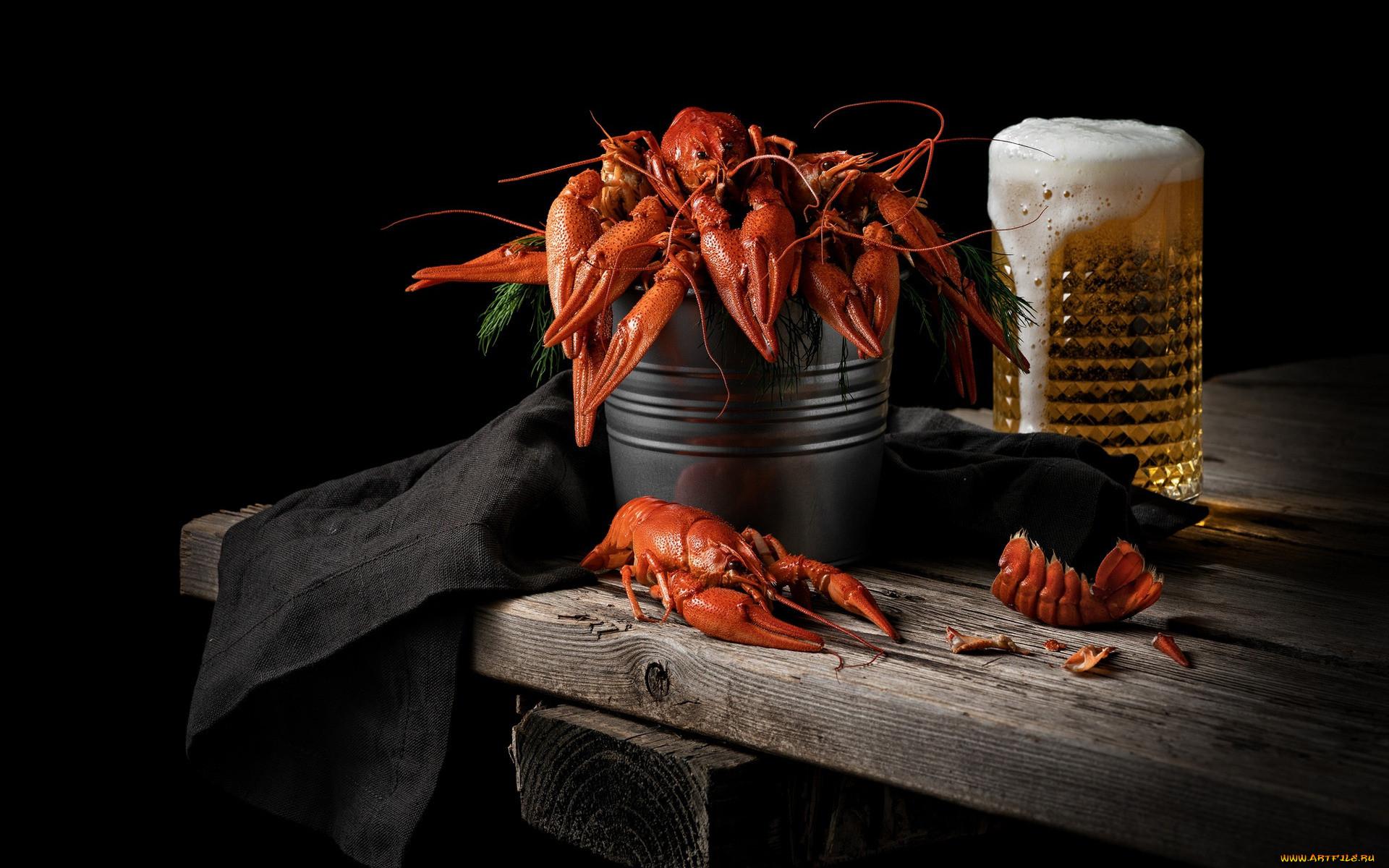 картинки пиво с рыбой и раками любители природы, ранимые